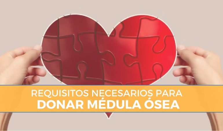 Requisitos para donar médula ósea